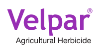 Velpar DF Herbicide - 4 Pounds